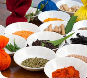 Ayuredisches Essen Surya Lanka
