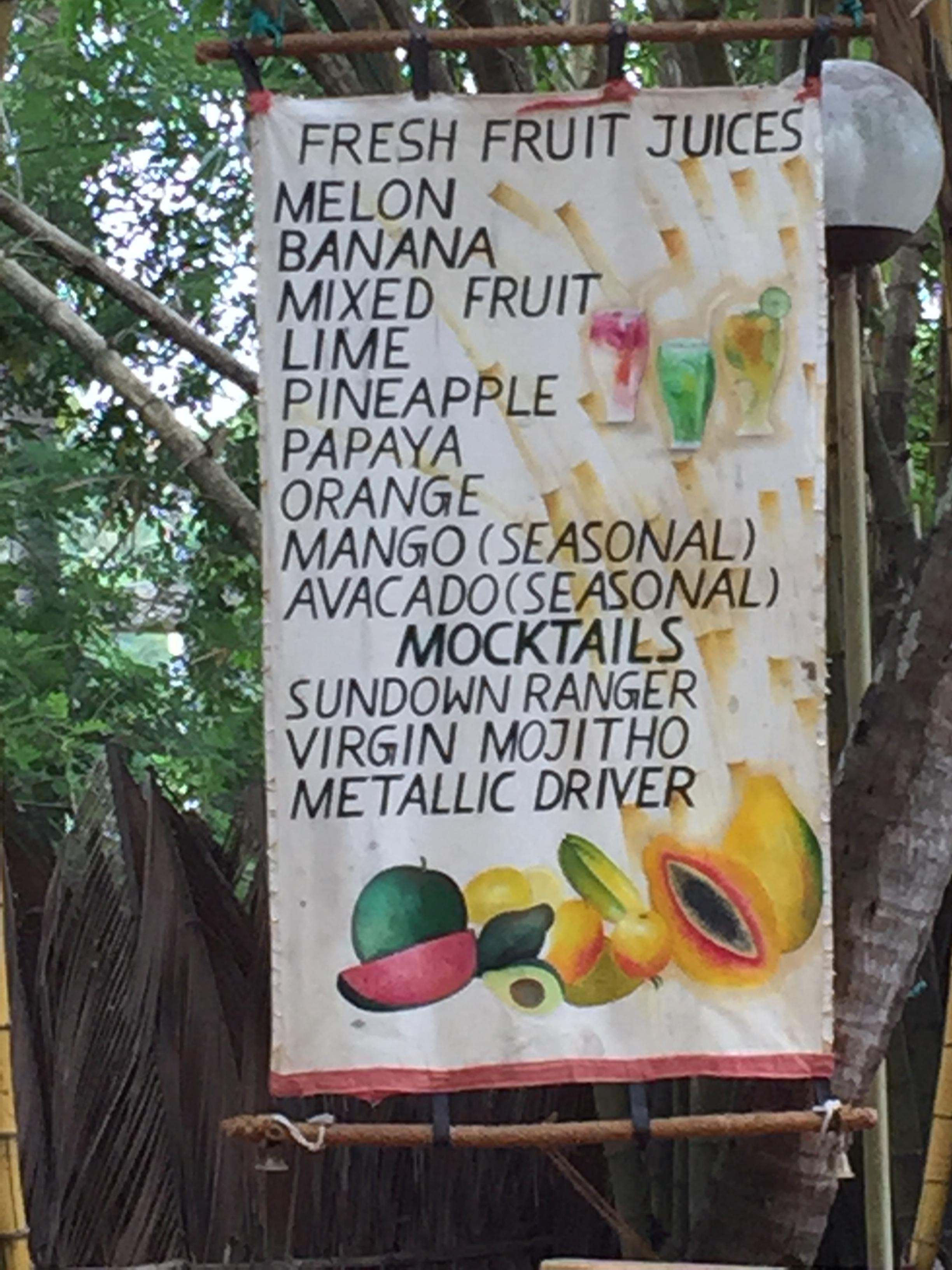 7 ultimative Tipps für Deine 1. Reise nach Sri Lanka