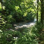 Bad Lauterberg - Harz - Lieblingsflecken
