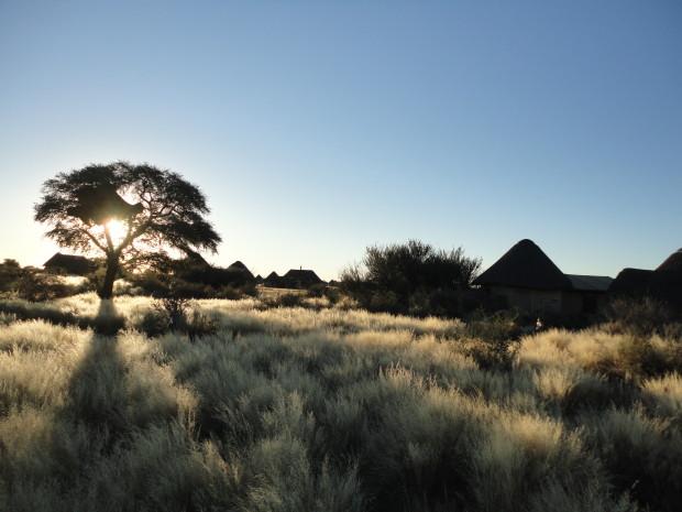 Vom Zauber des Aufbruchs - Namibia