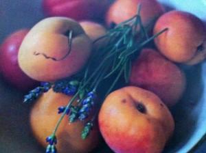 Aprikosen - zum Reinbeißen